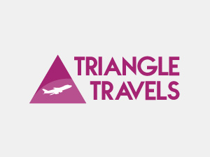 Logo Triangle Travel